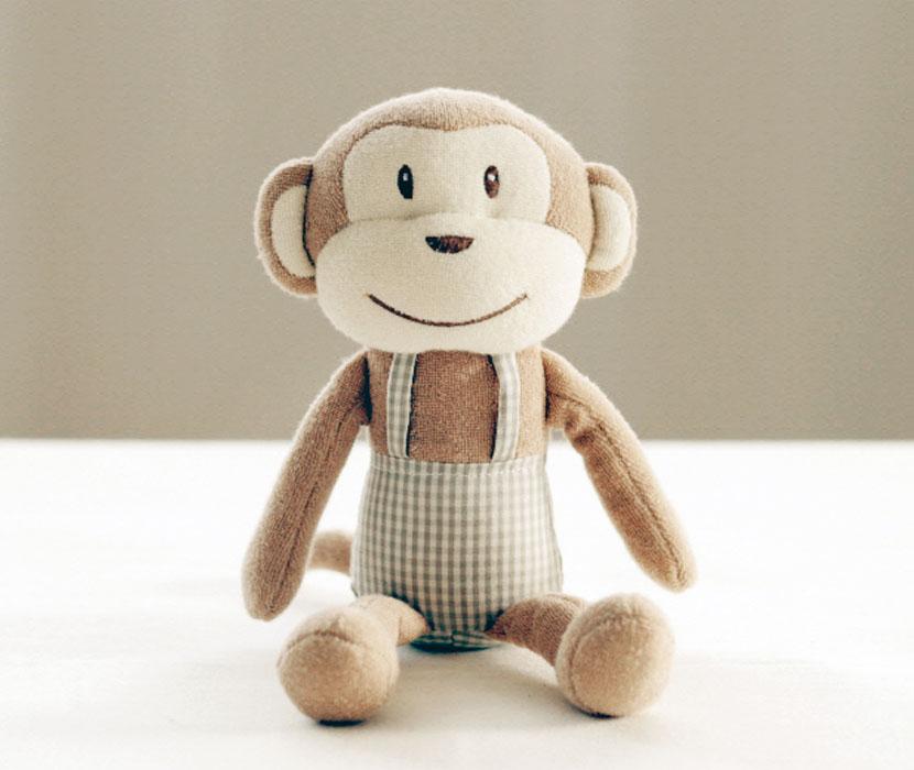 아기원숭이키키