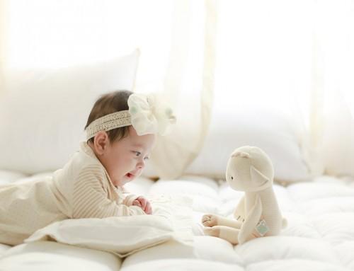 아기 양 치치